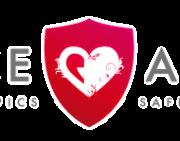 logo romance academy